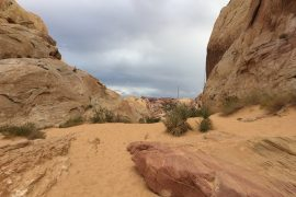 Valley of Fire: dagtrip vanuit Las Vegas